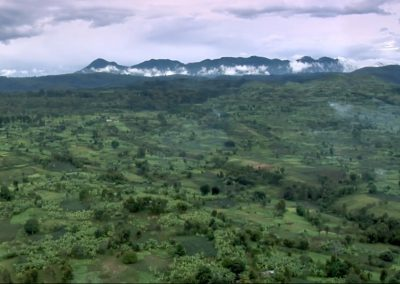 View of the Congo forest